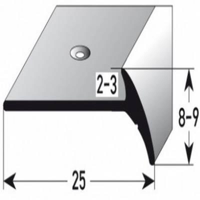 "Treppenkante ""Oiron"" Treppenkantenprofil / Winkelprofil / Fassonprofil, Aluminium eloxiert"